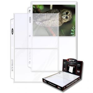 PRO 2-POCKET PHOTO PAGE (100 CT. BOX)